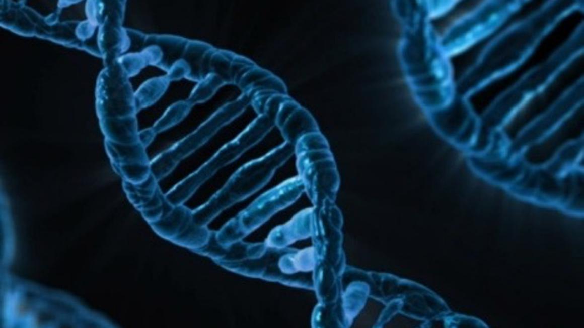 Nutrigenomics 基因營養體學?精準預防醫學中,營養師扮演的角色